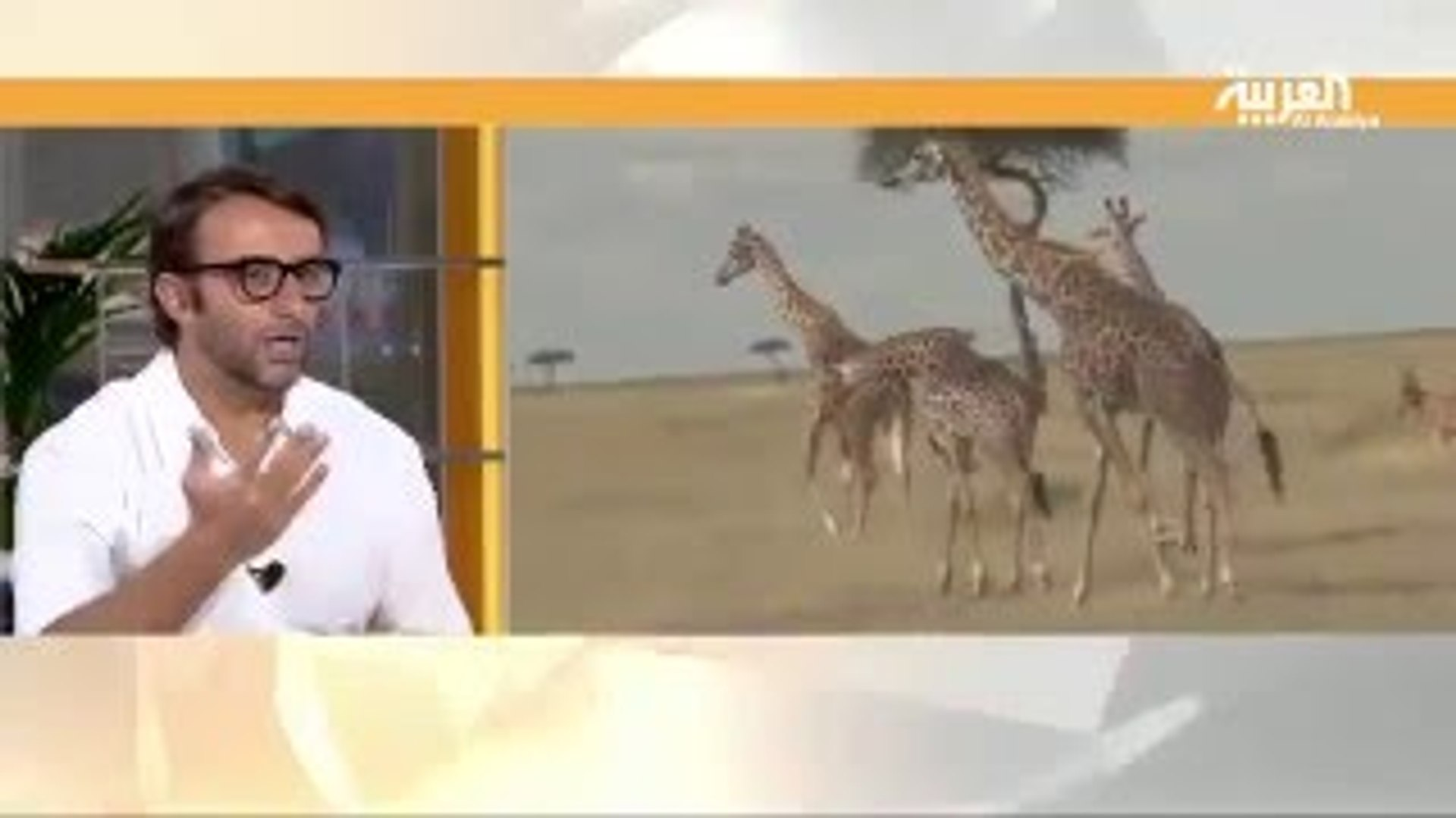 Travel Tips And Advice Africa Travel Show Live Dubai Al Arabiya TV