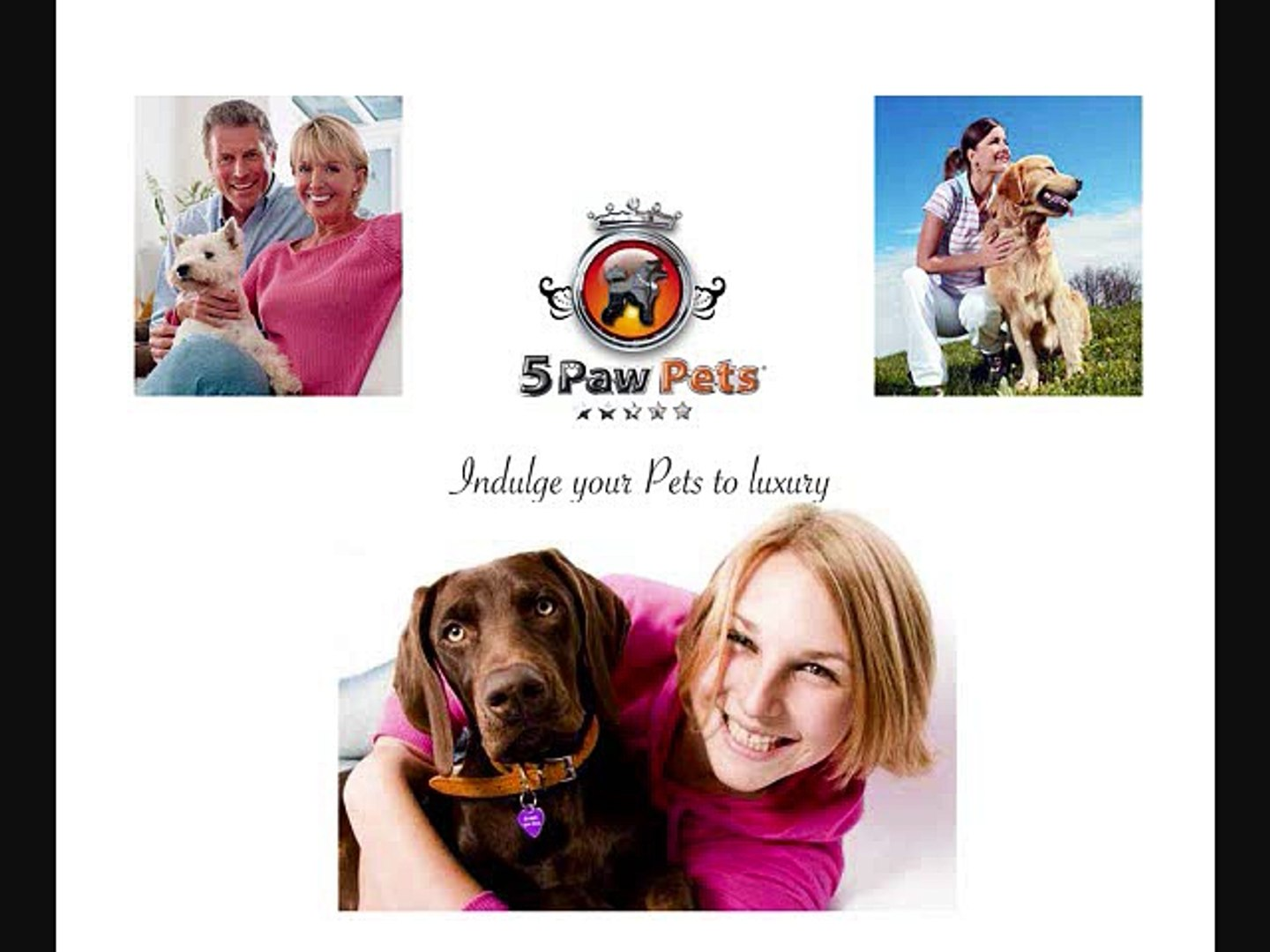 professional pet sitters in hollywood florida | florida  pet sitting  | professsional pet care