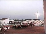 Isanti County 4H Drill Team 2008 Part 2