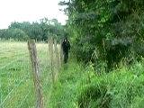saut dans les buissons 8