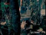 OLIVIA inspi' REIRA (TRAPNEST) - Wish (Nana 2nd Opening)