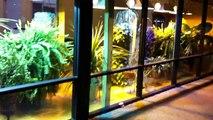 Elite Crete Reflector Enhancer Seamless Epoxy Flooring Northern Lights HGS Madison Heights MI