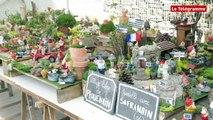 Brest. Un festival de nains de jardin