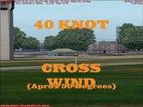 Posky 747 30Kt CrossWind FS9