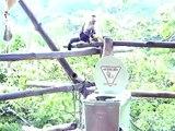 Monkeys inspecting the Ecosanitario