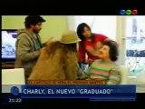 Adelanto de Charly García en Graduados