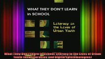 Read  What They Dont Learn in School Literacy in the Lives of Urban Youth New Literacies and  Full EBook