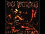 pig destroyer - ghost of a bullet