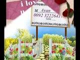 dil_cheez_hai_kya_jana