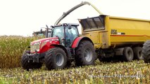 Mais hakselen Van Bakel Dairy 2013 - Jaguar 980, MF 8690, MF 7624, MF 7495, USA Equipment