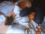 Furet - Furets Crunchy kamate katcheur ora mate