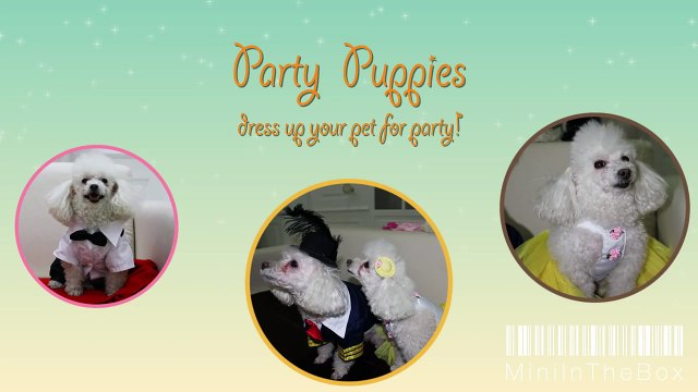 miniinthebox cool dogs and pets costumes for weddings and party