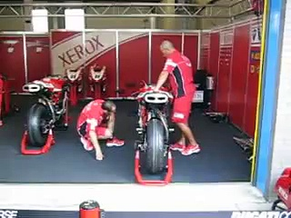Ducati fan