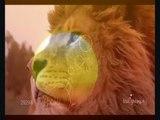 Lions - Tribute -  Apokalypt. Reiter.wmv