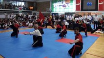 Dacascos Kung-fu - Athens Challenge 6-2-2011