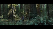 Swiss Army Man - bande annonce
