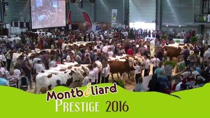 Montbéliard Prestige Streaming Live