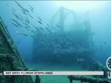 une exposition sous-marine sur une épave du 04/04/2016 - vidéo Dailymotion