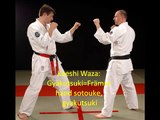 Applications Fighting & Sport Jutsu 5 Kyu Yellow Belt Dokan Ryu Ju Jutsu