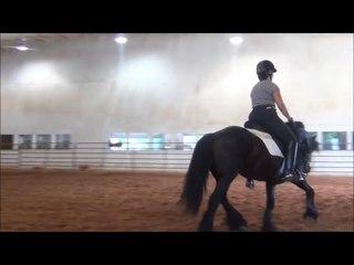 Napoleon Riding Video