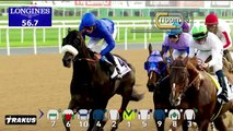 2015 UAE Derby Sponsored By The Saeed & Mohammed Al Naboodah Group (Group 2)