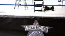 WWE WrestleMania 25 Jeff Hardy vs. Matt Hardy