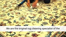 Your Carpet and Rug Cleaning Tips - Rug cleaning newport beach