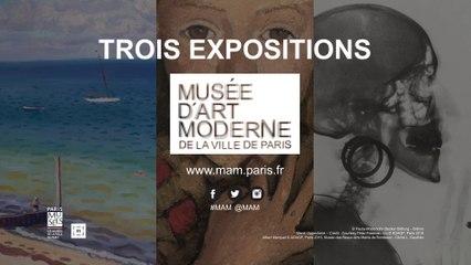Teaser   3 expositions au Musée d'Art moderne de la Ville de Paris