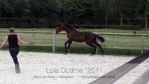 20120629 Lola Optima vrijspringen