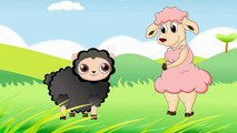 Baa Baa Black Sheep - Childrens Nursery Rhymes song by EFlashApps