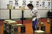 Ray Rice Karate Extreme Speed Board Brick Breaks Martial Arts Open House