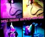 Una cantante muere en pleno concierto tras morderle una cobra
