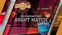 Avant-Match - J28 - Orléans reçoit Antibes