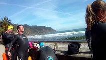 Los lobos marinos de Aguas Abiertas de Asturias nadando por la playa de la Concha de Artedo
