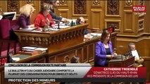 Séance : Protection des mineurs - Audition : Axelle Lemaire, Secrétaire d'État au Numérique - Les matins du Sénat