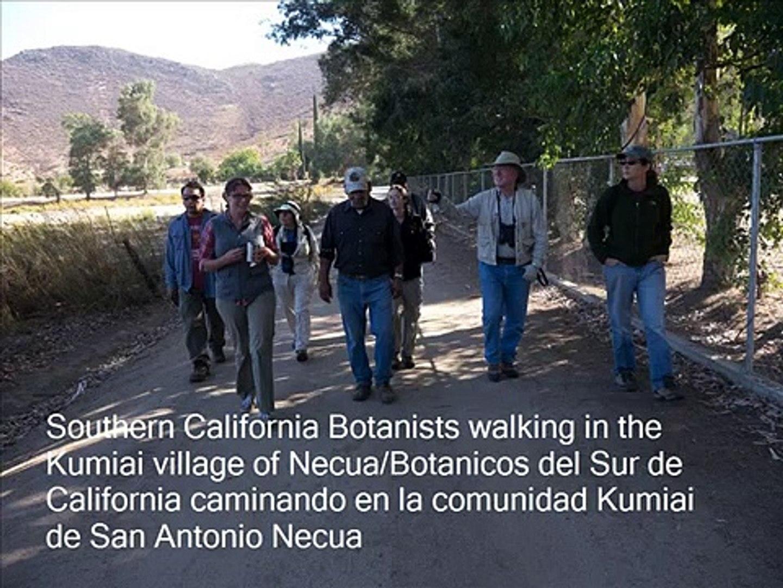 SoCal Botanist visit to San Antonio Necua
