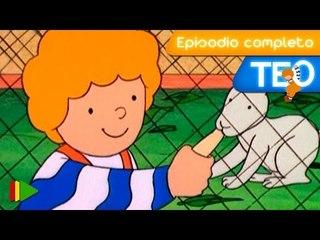 TEO (Español) - 29 - Teo visita una granja escuela