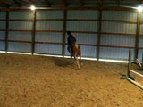Precious and Me Jumping a Small Course Bareback!