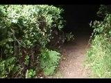 """Bigfoot at Trinidad Bluff"", Trinidad, CA"