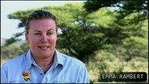 Girafa Operação d salvamento, Wild life, Reino animal, Animals, animais em extinção