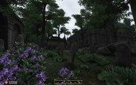The Elder Scrolls IV: Oblivion - Chorrol Modded.