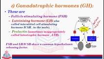 Gonadotrophic Hormone  (GH)) , Prolactin  ,Follicle Stimulating Hormone (FSH) And Leuteinizing Hormone (LH)