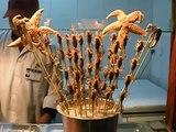 Beijing: Wangfujing Scorpions, Seahorses and Starfish