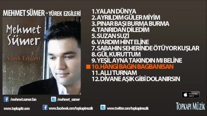 Mehmet Sümer - Hangi Bağın Bağbanısan (karaoke)