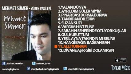 Mehmet Sümer - Allı Turnam (karaoke)