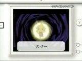The legend of Zelda: The Phantom Hourglass DS