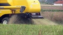 New Holland CSX 7080 koolzaad dorsen