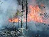 Sam Houston Rx Burn