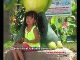 Soleram - Full Album Dangdut Koplo Anak Anak YouTube