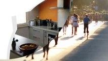 A vendre - Appartement - TOULOUSE (31300) - 3 pièces - 65m²
